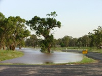 trundle water over road 2.jpg